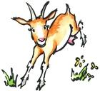 000lafermeducabriaulait_logo-chevre-colore.jpg